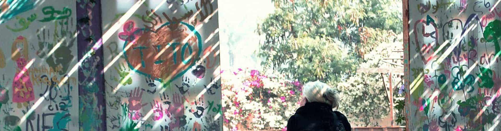 Etelka Kovacs-Koller, Malerin, madforart Action Painting